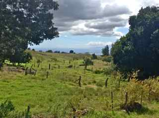 Upcountry Maui land for sale - big parcels of vacant land, exclusive estate property, oceanviews and developer land in Makawao, Pukalani, Olinda, Haliimaile, Kula, Ulupalakua,Kamehameiki Rd