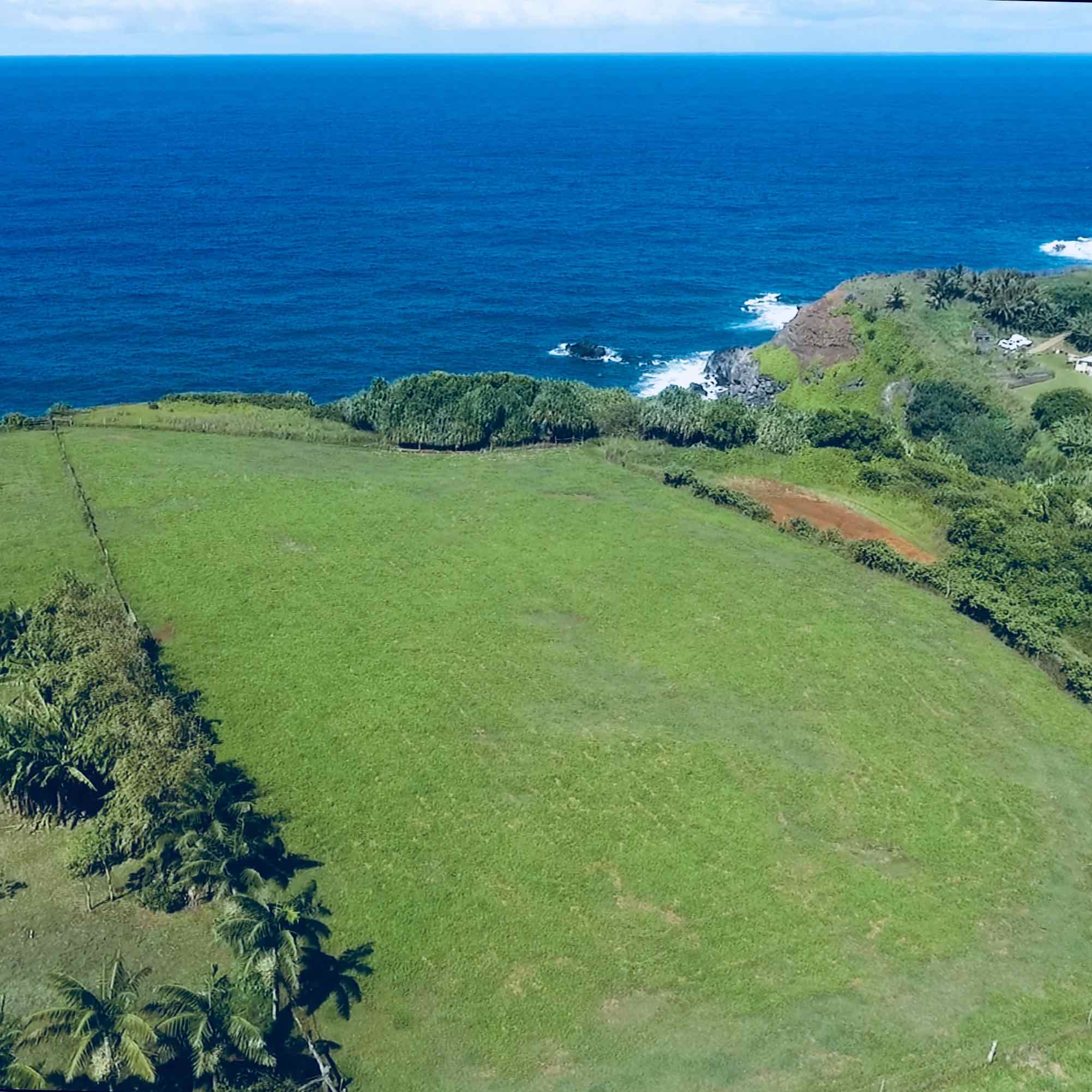 Haiku Maui property for sale - ocean view and oceanfront lots and acres - 460 Hoolawa Road is oceanfront acreage