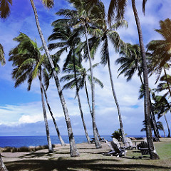 north shore maui beach homes for sale - Maui oceanfront and beachfront homes