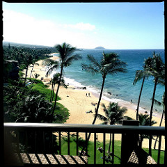 beachfront condos for sale with pools in Maui HI - search for Maui condo homes