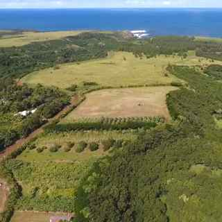 Farms and farmland for sale,country properties and acreage, oceanfront lots for sale in Haiku Maui Hawaii 96708