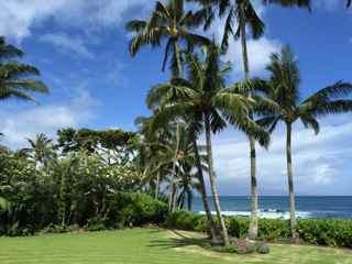 Kuau oceanfront - Maui oceanfront property for sale -  north shore with plantation style house and cottage